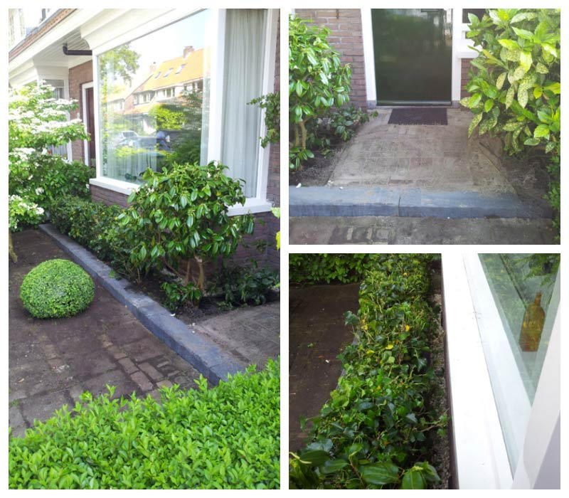 Tuin aanpassing ivm vochtproblemen